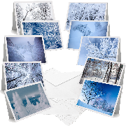 Japanese Winter Trees - Greeting Cards (Pack of 10)