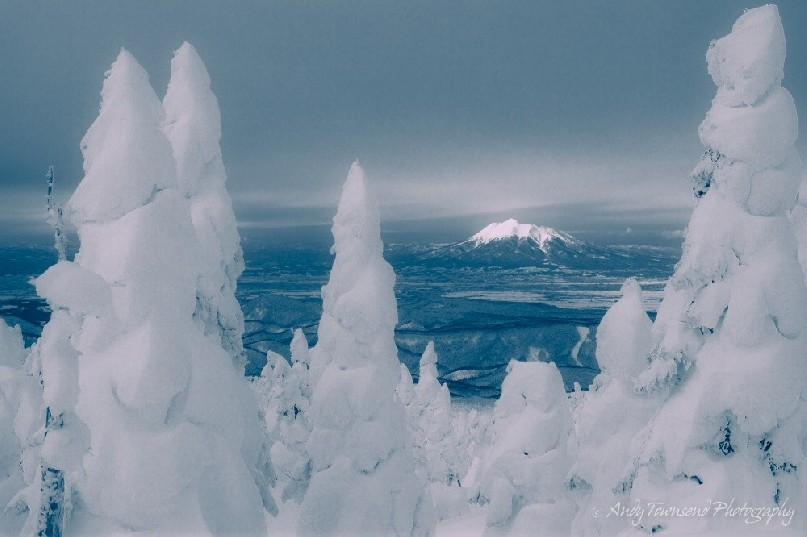 A distant Mt Iwaki is framed by snow-covered Maries' fir (Abies mariesii) trees.