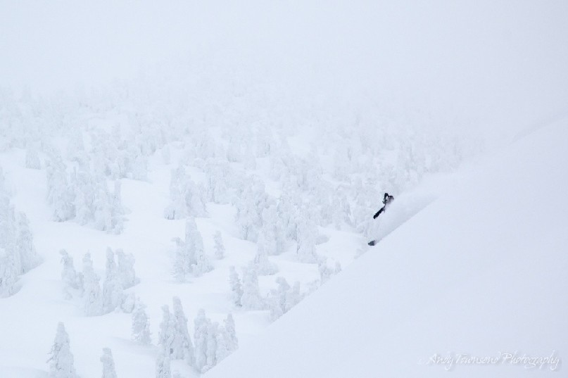 A male snowboarder makes his way down a steep slope with Maries' fir (Abies mariesii) trees in the distance.