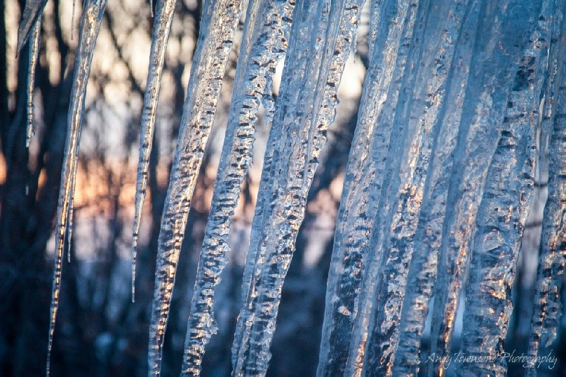 A winter progresses the ice on the edge on building creep towards the ground creating a lovely curtain effect.