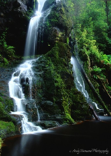 Soft, silky water cascades down the mossy falls in two streams surounded by rain forest.