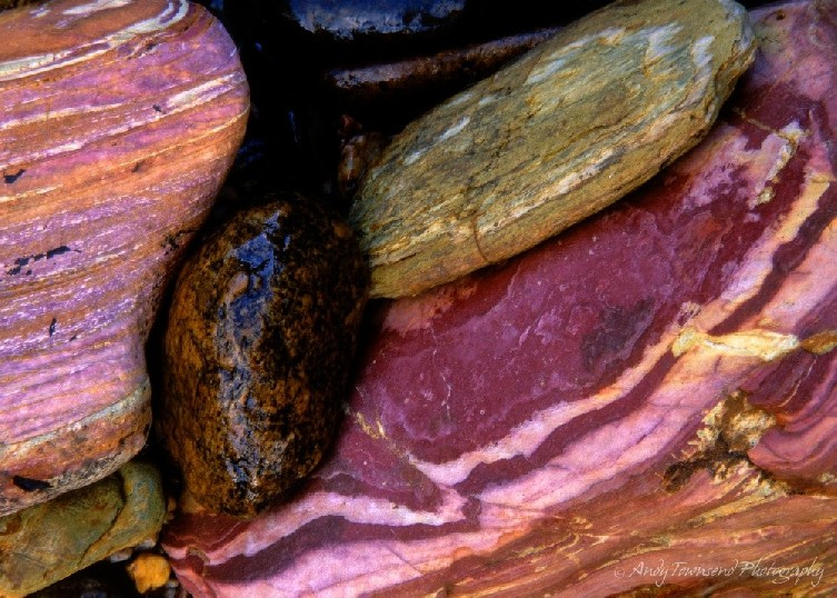 A closeup of some colourful rocks on the side of the Arthur River.