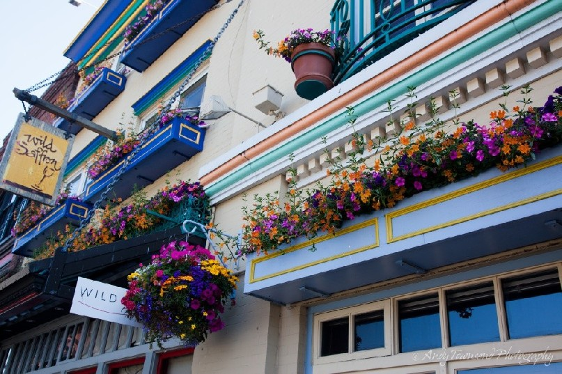 A wall of colourful flower boxes adorns this shop wall.