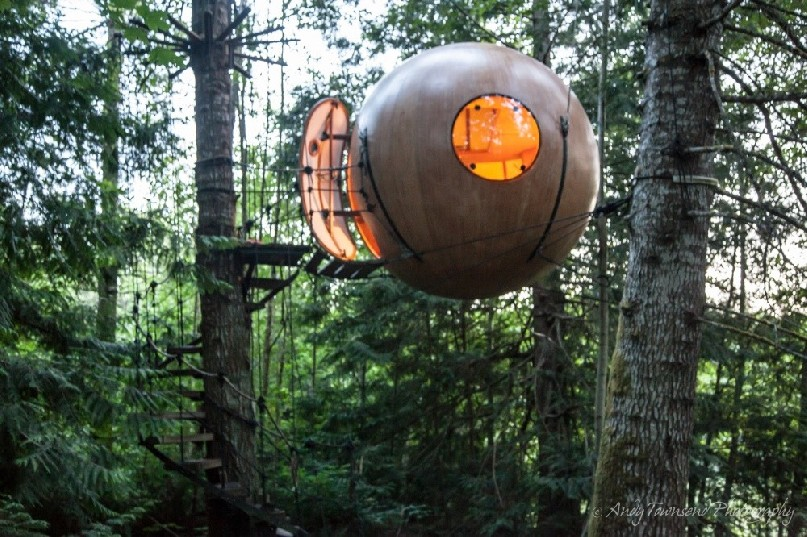 Nestled in the forest these free spirit spheres are accommodation pods suspended via cables from trees.