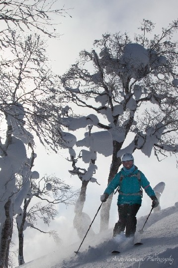 A female skier makes their way through snow laden trees at Rusutsu resort.