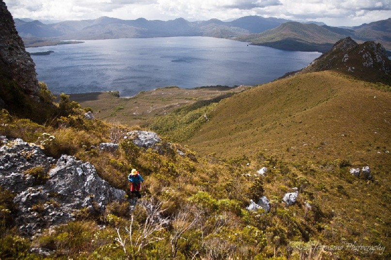 A walker tackles the final section of the climb up Mt Rugby with the view to Bathurst Harbour beyond.