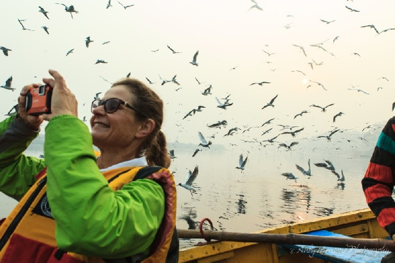 A lady photographing silver gulls on the Yamuna river in Delhi.