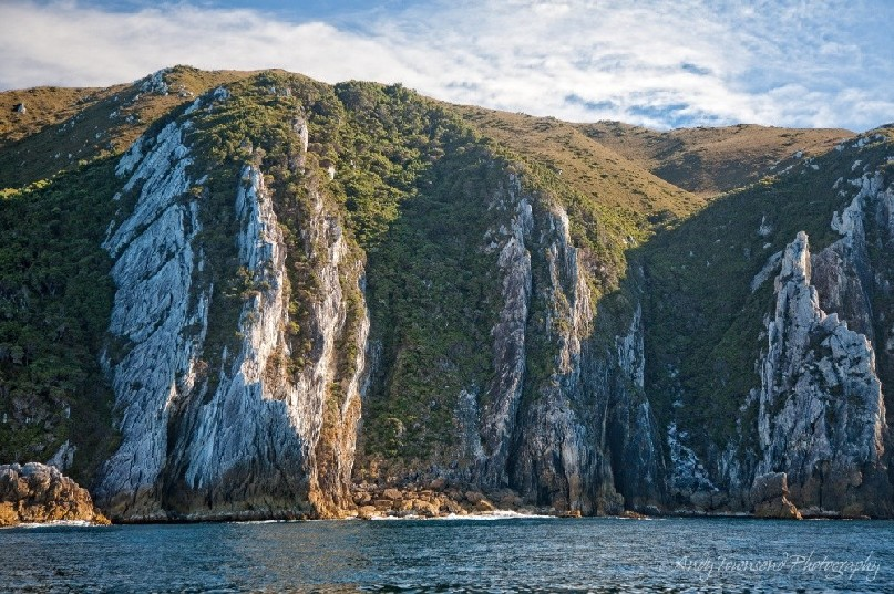 Quartzite cliffs rise out of the sea along the Southwest Tasmanian coast.