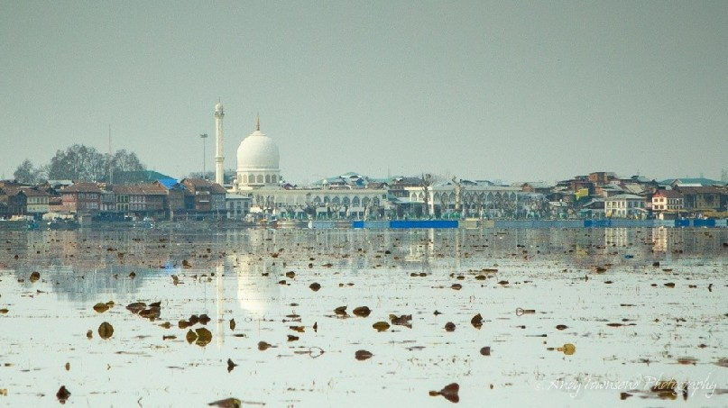 Reflections from the Muslim shrine reflect into Dal Lake.