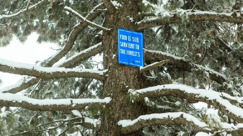 A road sign on the Tangmarg to Gulmarg road.