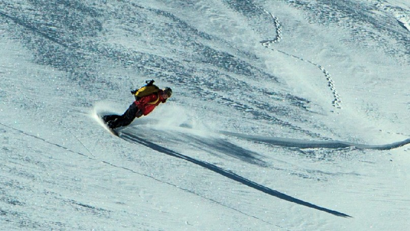 A snowboarder arcs through a turn in fresh snow with distant animal tracks behind.