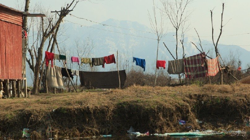 A colourful clothes line in the backyard of a house ajoining Dal Lake.