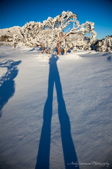 The late afternoon sun casts a long shadow of the photographer on wind-packed snow near The Paralyser, Kosciuszko National Park, Australia.