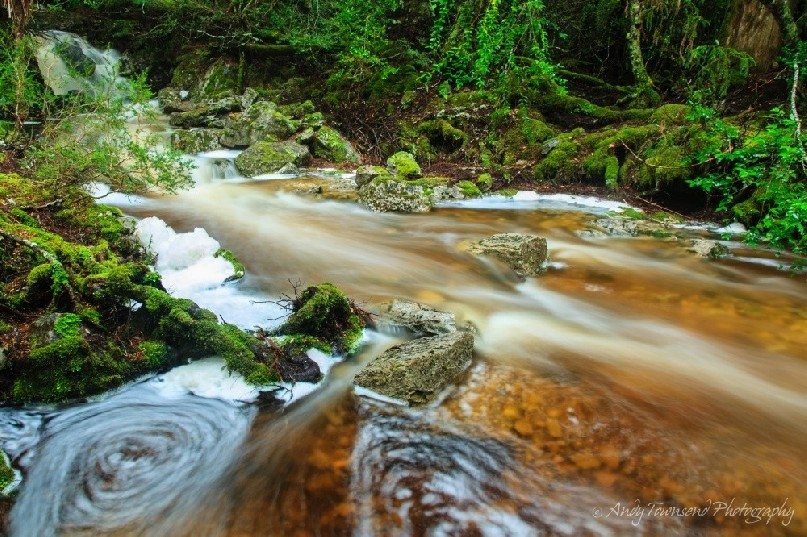 Swirling patterns and foam piles form along this swollen creek in the temperate rainforest near Cradle Mountain.