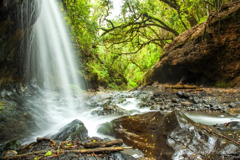 A waterfall cascades down into a rocky stream bed surrounded by forest on the side of Mt Meru.