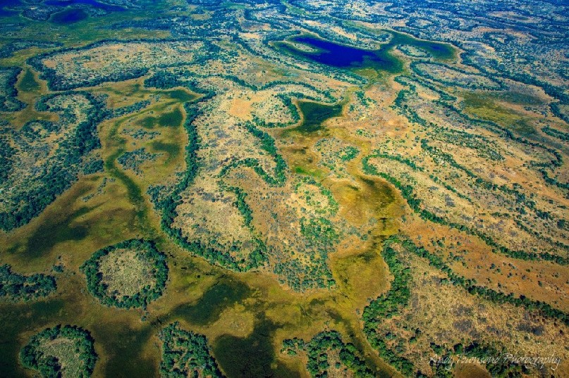 Aerial view over the Okavango Delta.