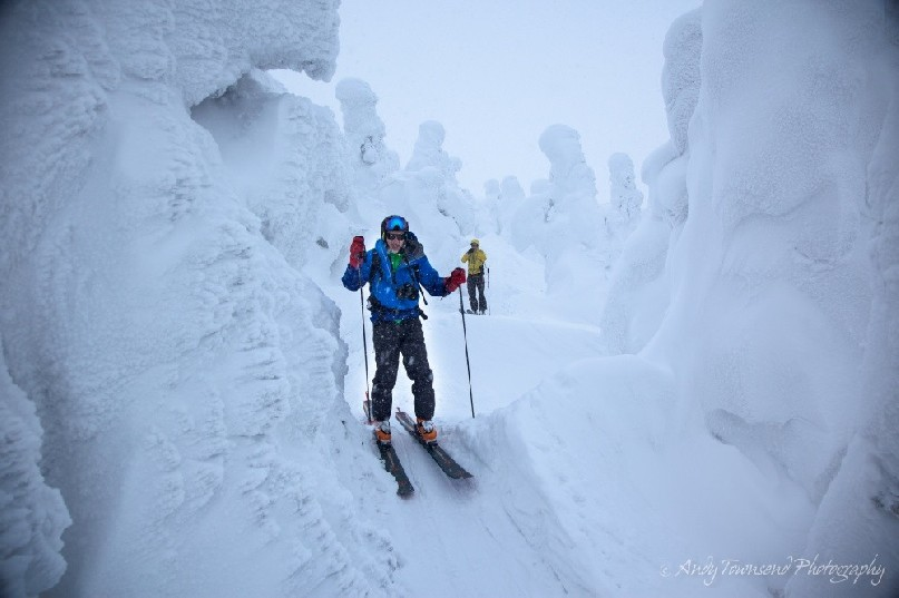 A skier moves through rime-encrusted 'snow monster' trees (Maries' fir - Abies mariesii) that the Japanese call Juhyo.