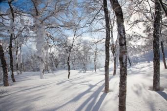 Hokkaido Backcountry